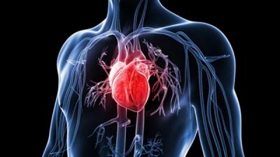 8 dấu hiệu trên cơ thể cảnh báo tim của bạn đang gặp rắc rối