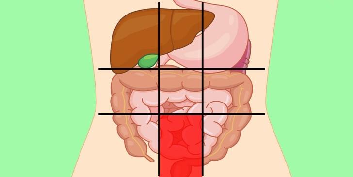 9 vị trí đau bụng nói lên điều gì về sức khỏe của bạn?
